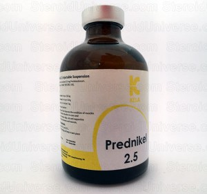 Prednikel 2.5 - 100ml